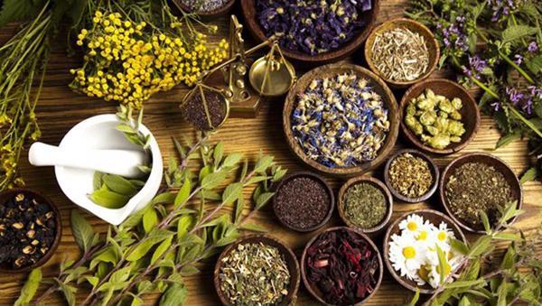 Các loại nguyên liệu sản xuất thực phẩm chức năng. Tiêu chuẩn lựa chọn